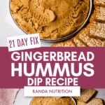 21 day fix gingerbread hummus dip