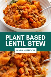 plant based lentil stew