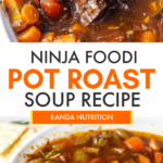 Ninja Foodi Beef Vegetable Soup Recipe