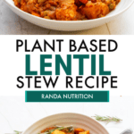 healthy lentil stew recipe