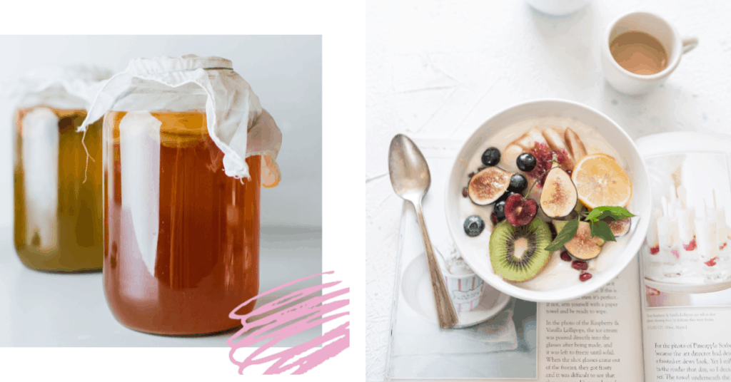kombucha and yogurt probiotics