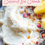 dairy free pina colada ice cream recipe