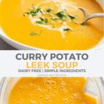 curry potato leek soup
