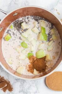 ingredients for apple cinnamon oats in a sauce pan