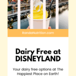dairy free at disney
