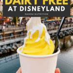dairy free at disneyland