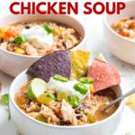 instant pot southwest chicken soup