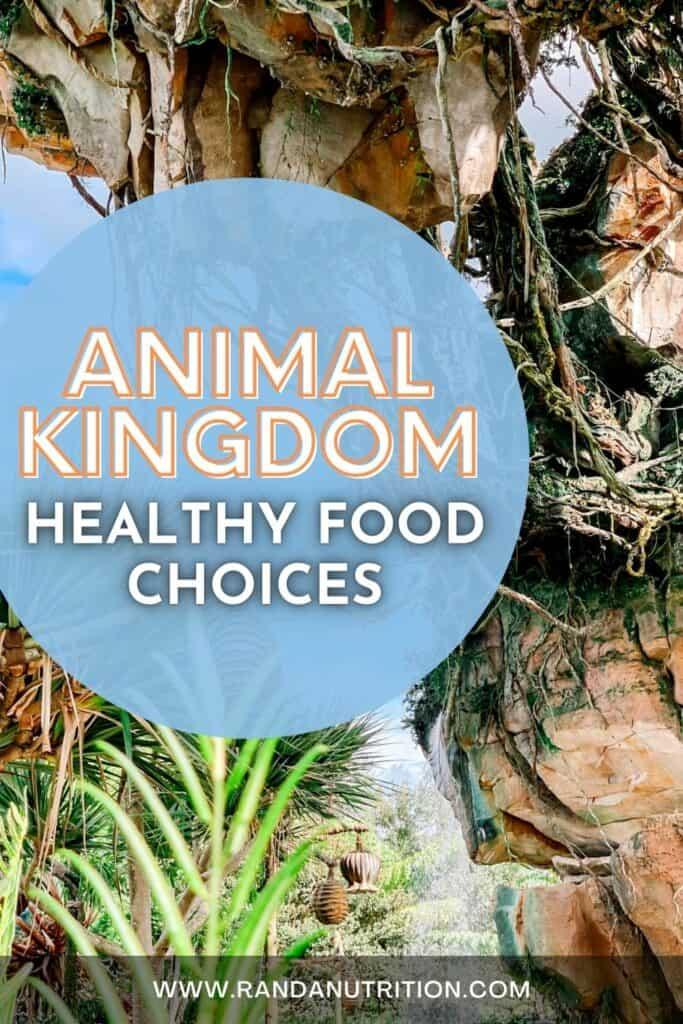 eating healthy at animal kingdom