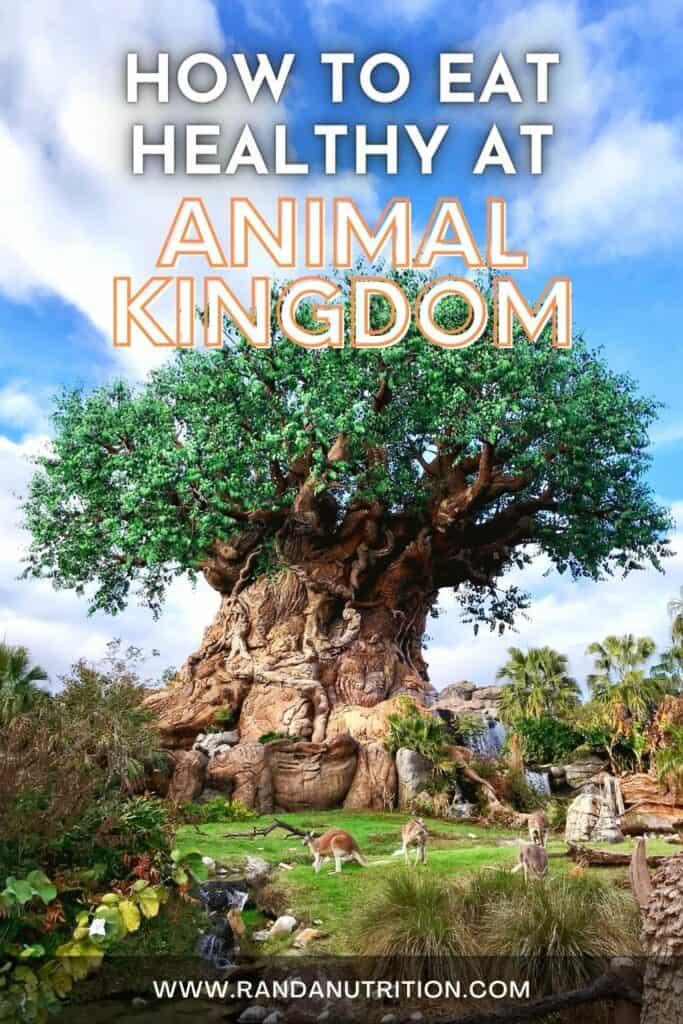 healthy options at animal kingdom